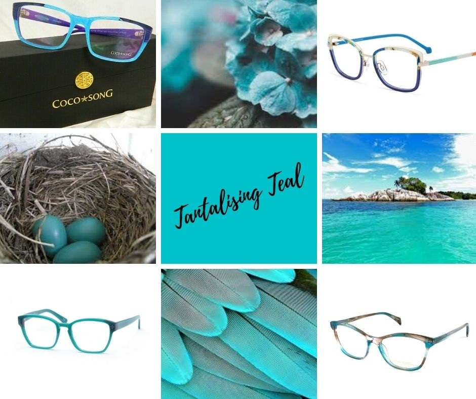 Tantalising Teal Colour styling at Allegro Optical